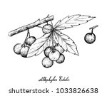 berry fruits  illustration of... | Shutterstock .eps vector #1033826638