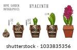botanical set home garden... | Shutterstock .eps vector #1033835356