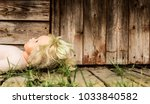 old neglected doll in front of... | Shutterstock . vector #1033840582