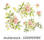 watercolor drawing of twig with ... | Shutterstock . vector #1033905985