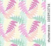 fern frond herbs  tropical... | Shutterstock .eps vector #1033913716