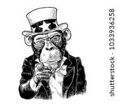 monkey uncle sam with pointing... | Shutterstock .eps vector #1033936258