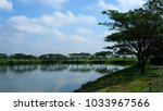 trees and lakes in the evening. | Shutterstock . vector #1033967566