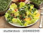 vegetable salad with freshly... | Shutterstock . vector #1034003545