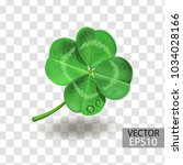 clover leaf isolated on a... | Shutterstock .eps vector #1034028166