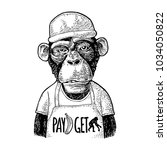 monkeys fast food worker... | Shutterstock .eps vector #1034050822