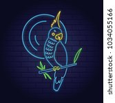 neon sign of summer tropical... | Shutterstock .eps vector #1034055166