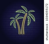 neon sign of summer beach... | Shutterstock .eps vector #1034055172