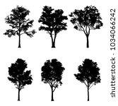 illustration of tree... | Shutterstock . vector #1034066242