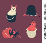 Four Fat Cat Confused In Bucket ...