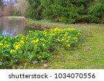 spring background with yellow   ... | Shutterstock . vector #1034070556