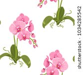 realistic detailed drawing pink ... | Shutterstock .eps vector #1034285542