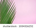 green palm leaf on pastel pink... | Shutterstock . vector #1034326252