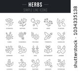 set of outline signs and... | Shutterstock .eps vector #1034335138