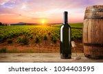 ripe wine grapes on vines in... | Shutterstock . vector #1034403595