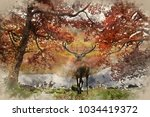 Watercolor Painting Of...