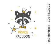 raccoon prince. surface design. ... | Shutterstock .eps vector #1034513122