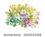 hand drawn watercolor... | Shutterstock . vector #1034523208