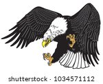 bald eagle in the fly . white... | Shutterstock .eps vector #1034571112