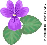 violet flower with two green... | Shutterstock .eps vector #1034687242