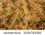 dried shredded pork | Shutterstock . vector #1034763385