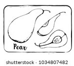 black and white fruit sketch... | Shutterstock .eps vector #1034807482