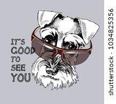 Schnauzer In A Dark Sunglasses...