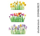 bouquet with spring flowers | Shutterstock .eps vector #1034863825