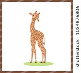 vector illustration .cute...   Shutterstock .eps vector #1034876806
