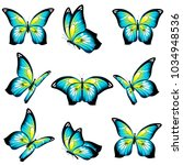 beautiful blue butterflies ...   Shutterstock .eps vector #1034948536