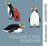 yellow eyed penguin cartoon... | Shutterstock .eps vector #1034989795
