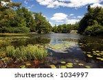 lake landscape   Shutterstock . vector #1034997