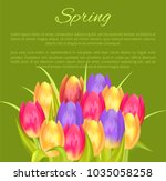 Spring Poster Place For Text...