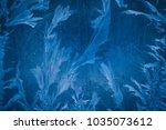 frost pattern or flower on... | Shutterstock . vector #1035073612