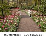Romantic Path In The Park...