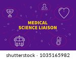Conceptual business illustration with the words medical science liaison