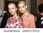 milan  italy   february 25 ...   Shutterstock . vector #1035172912