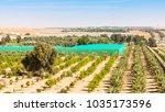 a desert farm situated among... | Shutterstock . vector #1035173596