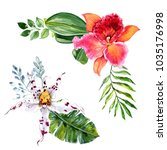 Watercolor Orchid Flowers And...