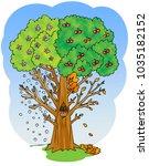 four seasons tree  spring ...   Shutterstock . vector #1035182152