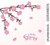 cherry tree blossom with... | Shutterstock .eps vector #1035348076
