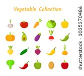 flat isolated vegetable icon... | Shutterstock .eps vector #1035370486