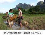 childern are fishing in a...   Shutterstock . vector #1035487438