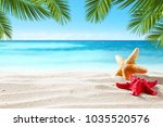 shell on beach and summer time  | Shutterstock . vector #1035520576