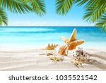 shell on sand and summer time  | Shutterstock . vector #1035521542