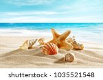 shell on sand and summer time  | Shutterstock . vector #1035521548