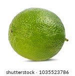 lime isolated on white... | Shutterstock . vector #1035523786