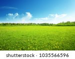 field of spring flowers and... | Shutterstock . vector #1035566596