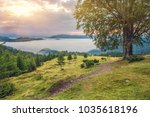 beautiful summer landscape in...   Shutterstock . vector #1035618196