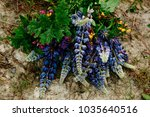 beautiful bouquet of colored... | Shutterstock . vector #1035640516